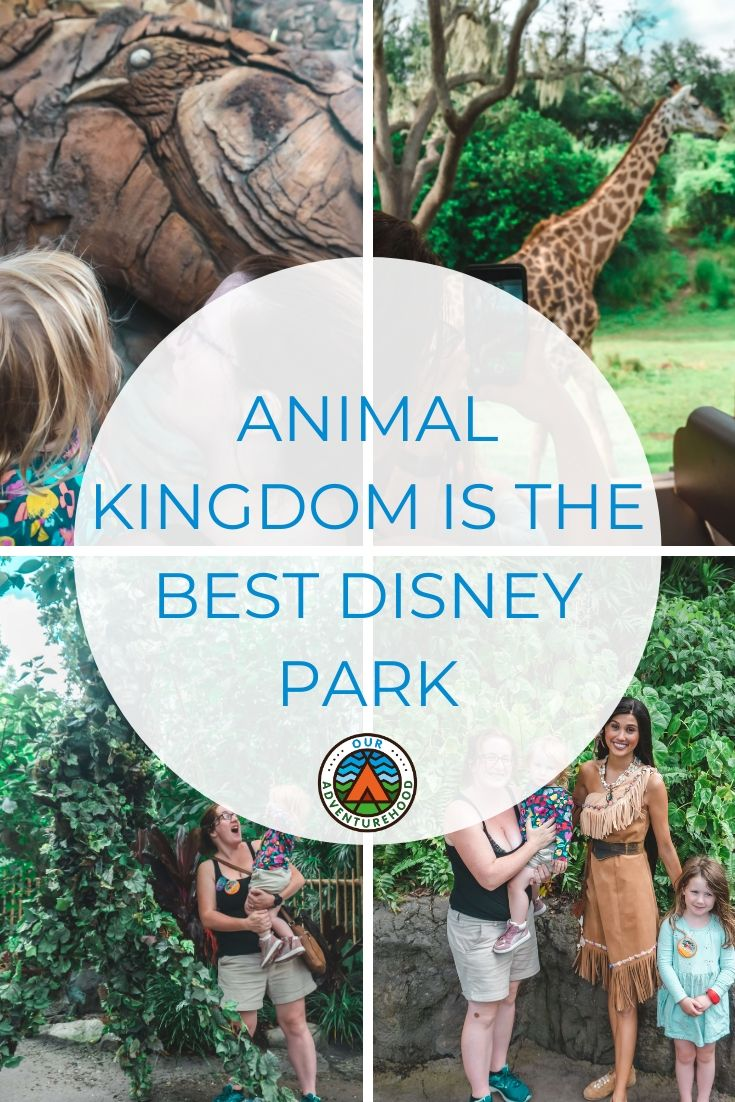 Animal Kingdom is our favourite Walt Disney World park. It has everything you want for a family day out. Find out why.